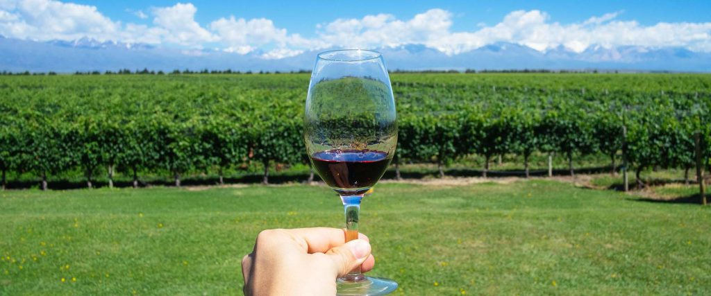 Masculine hand holding glass of wine with Andes and Winery on th